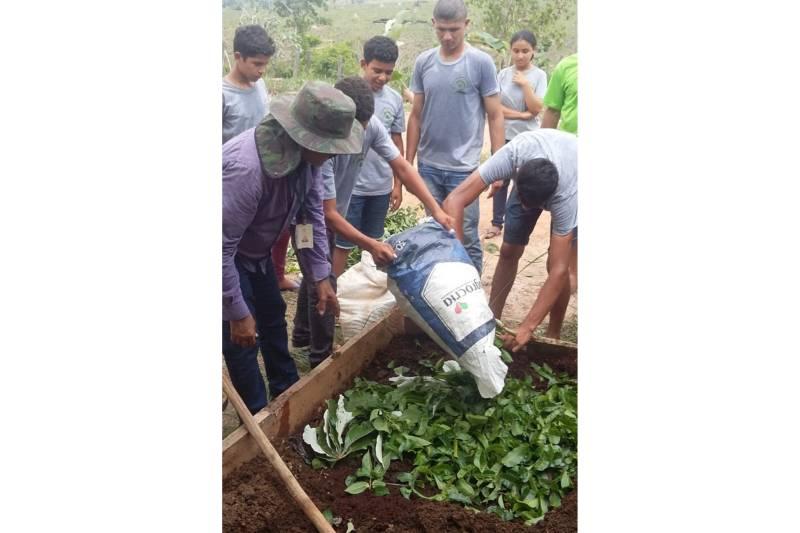 Projeto Quintal Verde da Emater implanta horta em escolas - Para
