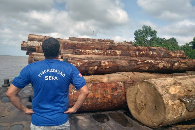 1,515m3 of wood seized in Curralinho